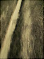 cesta (motak)