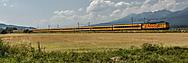 MUC_6214rj (lokomotionjoe)