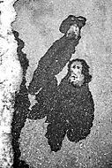 Opičáci... (honzj)