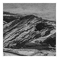VLNA (dragolis)