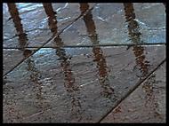 Po dešti (basa333)