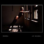 ...svět tam za oknem... (Zdenek_K)