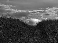 vítr v trávě (vaclavbond)