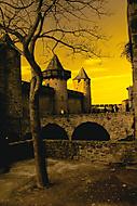 Carcassonne trochu jinak (petr19710)