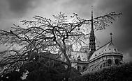 Dark Paris... (Highradek)