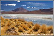 Smrdutá laguna, Altiplano, Bolívie (daniel_linnert)