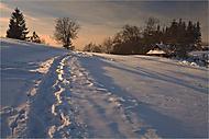Zimní krajina (Hans2)