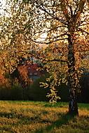 Jarní podvečer (MarekUjcik)