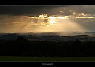 Večer na pastvě (Radek Fiala)