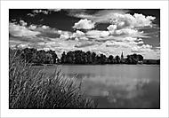 Rybník Oborník, lidově zvaný Brasák, v Zábřeze, poblíž kasáren, .... (.blackthorn)