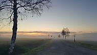 Mlhavé ráno (Bokys)