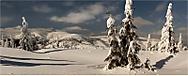 V zimě (Hans2)