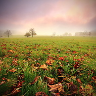 Barvy podzimu (MarekUjcik)