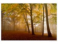 Podzim na Male skale (BenaCZ)