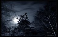 ked sa mesiac prebudza (marian šicko)