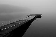 Mlhavá (asile)