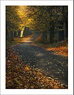 Podzimní ráno 6... (Vlastimil Pibil)