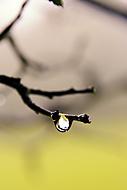 Po dešti (mbk1)