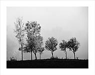 Držme sa radšej spolu,nech sa v hmle nestratíme :) (Ivan 76)