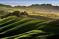 Tuscany (lennyl_2)