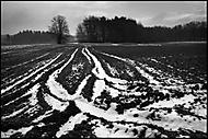 Zima u Zbožice (honzj)