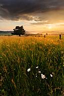 Pastviny u Stránské (xfiala43)