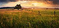 Letní večer na pastvinách (xfiala43)