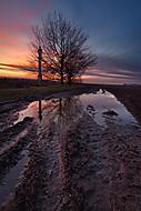 Večer na blatě :-) (xfiala43)