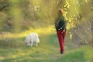 Walk with dog (Megas.Lakkos)