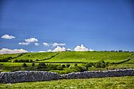 Kdesi v Irsku (jankrikava)