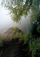 Mlha na štrbském plese (Vlastimil Pibil)