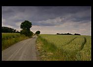 V polích (Marek.)