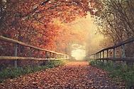 Podzimn� r�no (Simona42)