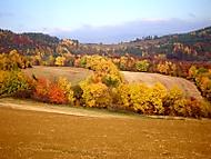 Jeseň v Šarišskej vrchovine (fdoko)