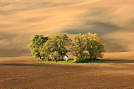 Podzim u kapli�ky (MarekUjcik)