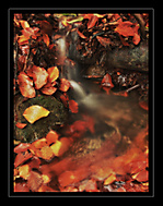 Jesenný potôčik (VitoAntolini)