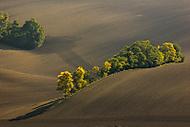 Podzim na Moravě (MarekUjcik)