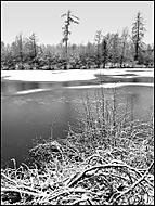 Rybník Drátovec 1 (honzj)