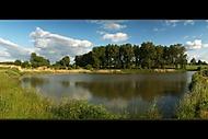 Rybník (Zakov)