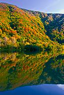 Jesenné farby (ZVarga)