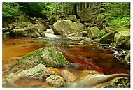Vodní svět (grebson)