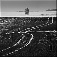 Zimní grafika 11 (honzj)