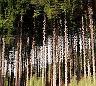 Zrcadlení (Vlastimil Pibil)