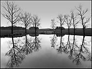 Termesivský rybník (honzj)