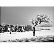 ...krajina zimní, civilizovaná... (fakir.h)