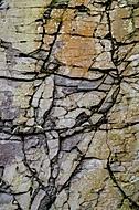 Geologické sgrafito (jkrtek)