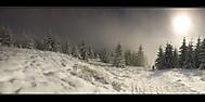zimní procházka (bamilan)