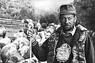 Pastier (Zoran_2)