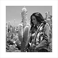 o kaktusovém květu a myším kožíšku ... (oko-nomada)