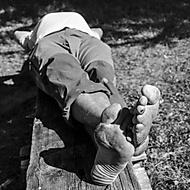 lesný robotník (humusak)